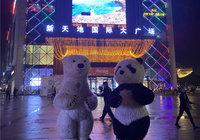 現代·森林國際城|仙北|10月30日新天地廣場路演繽紛落幕
