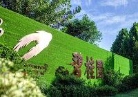 碧桂园再登《财富》世界500强榜单 居全球房企之首