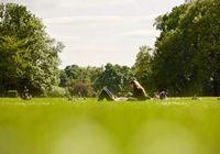 走出公园,又进公园,仙桃还有这样的地方!