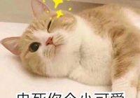 5月 漢川將有一個新名字!