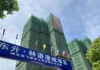 东升·林语漫城6月工程进度丨1、2号楼喜封金顶!