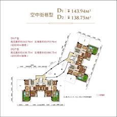 太子湖国际社区--D1,D2空中街巷型