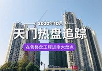 家音播報:天門各大樓盤10月工程進度匯總