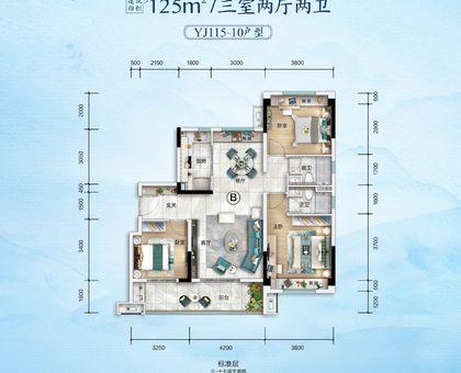 应城碧桂园·云玺2#楼YJ115-10户型