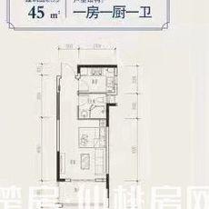 中大学府45m²户型图