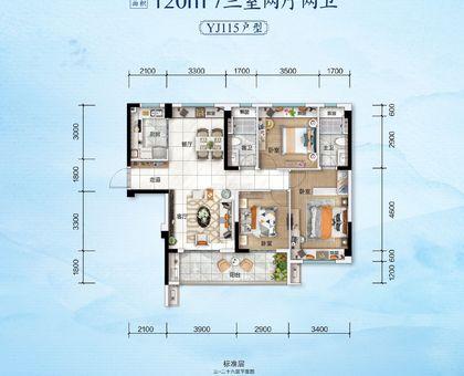 应城碧桂园·云玺1#楼YJ115户型