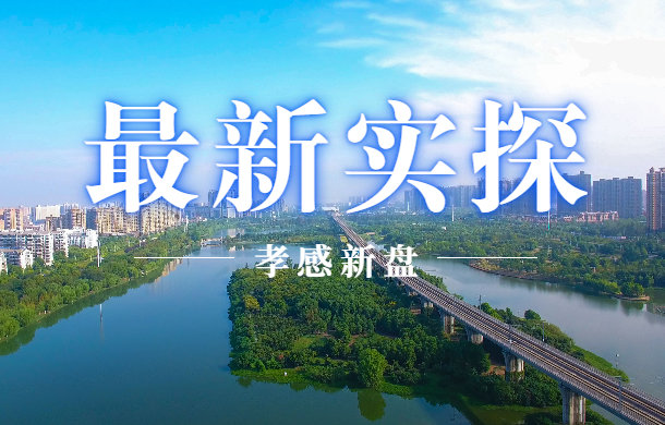 大佬云集!孝感10大纯新盘进展曝光 预计下半年集中开盘!