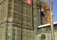 御湖花园1月工程进度:春风将绿江南岸