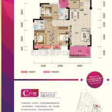 漢川·銀湖天街C戶型戶型圖