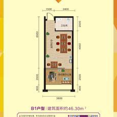 寰城·南方国际商城办公B1户型图