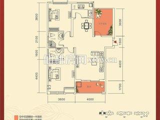 红树湾6#C户型图