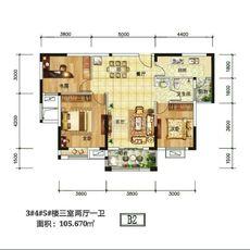 金港印象B2户型图