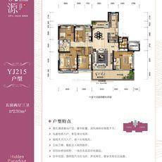 孝感碧桂园·桃源12#楼YJ215户型户型图