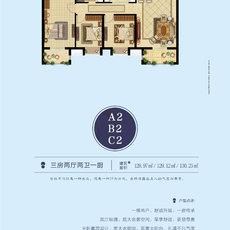 中顺·紫金苑A2 B2 C2户型户型图