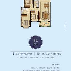 中顺·紫金苑B3 C1户型户型图