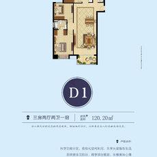 中顺·紫金苑D1户型户型图