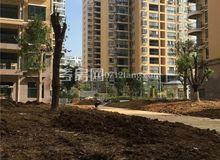 港锦新城9月工程进度:8#楼即将封顶