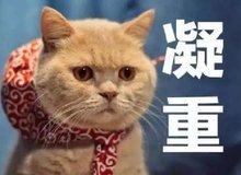 2019年楼市大变革:棚改计划重出江湖!!