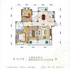 中国院子·国府D1户型125/131㎡户型图