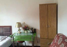 宏达路市皮肤病医院对面一室一卫精装修公寓出租