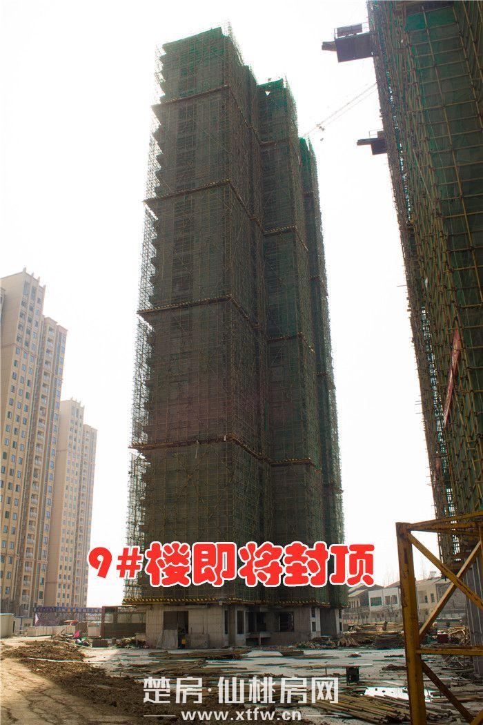 20190325-南國明珠9號樓.JPG