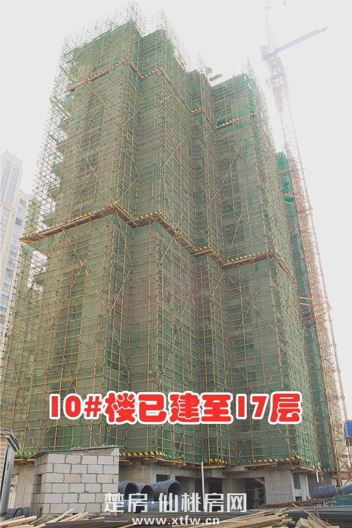 20190325-南國明珠10號樓.JPG