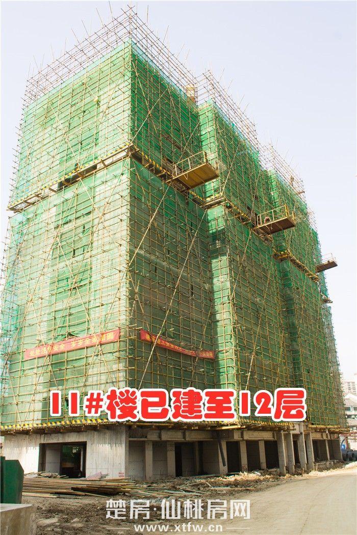 20190325-南國明珠11號樓.JPG