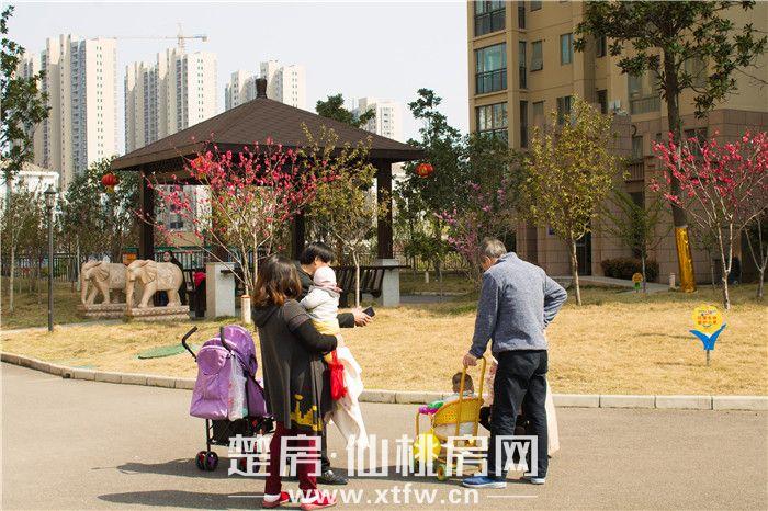 20190325-南國明珠已入住小區一角.JPG