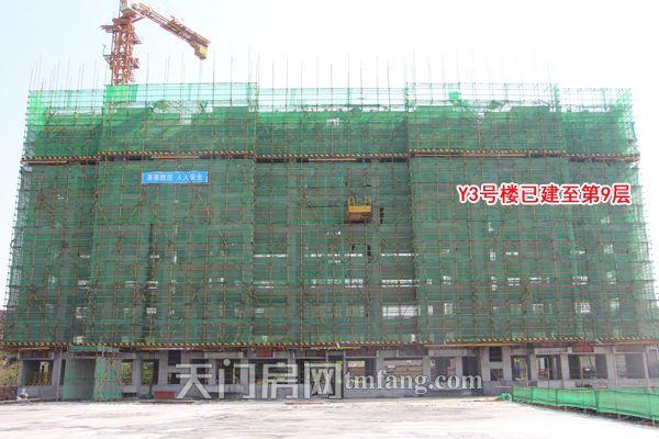 Y3号楼已建至第9层.jpg