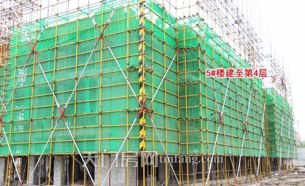 5号楼建至第四层.jpg