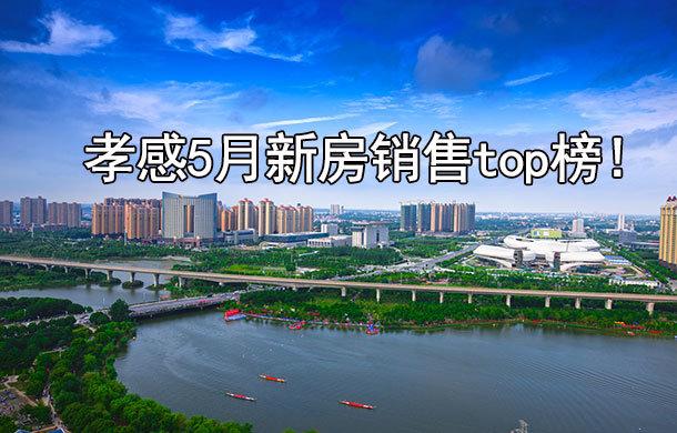 孝感5月上旬新房销售top8出炉 东城区占据3席!