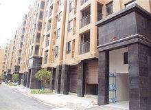 江漢明珠小區已交房裝修 社區景觀提前看
