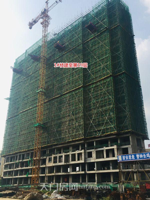 1号楼建至第19层.jpg