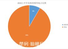 2019年仙桃土拍半年报:48幅地块揽金近9亿