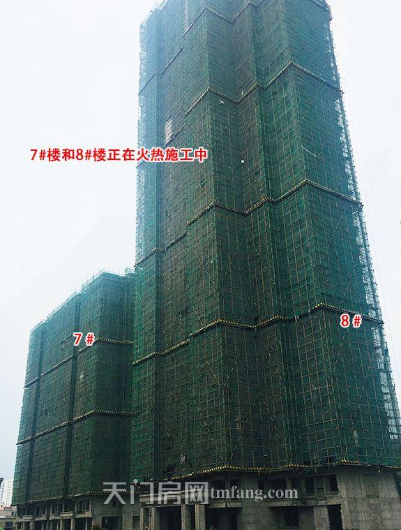 正在施工的7号楼和8号楼.jpg