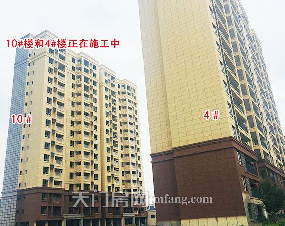 正在施工的10号楼和4号楼.jpg