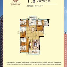 君佳·陆羽华府二期C户型167.32㎡户型图