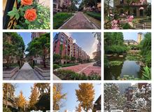 城西宜居楼盘 绿地•香格里拉优质房源推荐