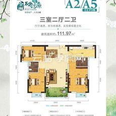 云梦全洲桃源A2/A5户型图