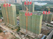 滿庭春·當代城工程進度 | 匠心一如既往 見證美好不斷生長!