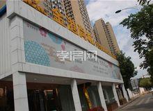 金港尚城9月进度:小区内绿化带即将施工