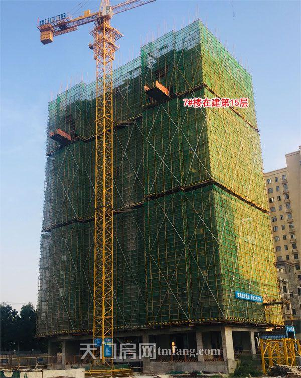 7号楼在建第15层-(2).jpg