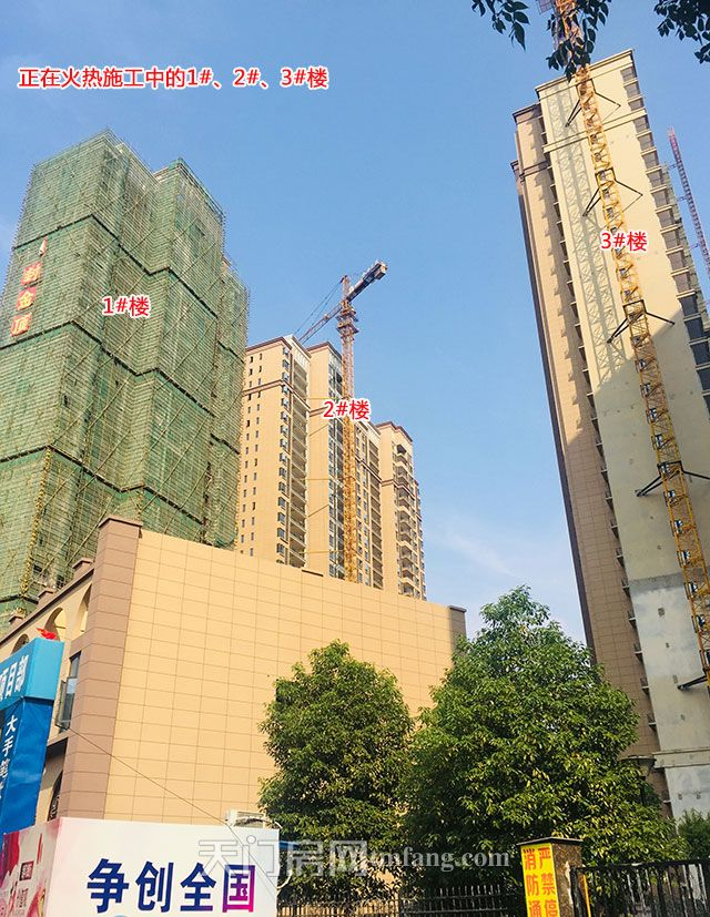 东湖中央公馆正在火热施工的1#2#3#楼.jpg