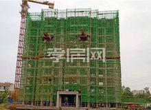 金域国际10月工程进度:18号楼已建至11层