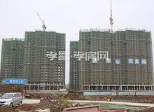 孟宗·凤凰城11月进度:G1/G2/G3建至23层