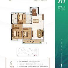 中南·春溪集B1戶型戶型圖