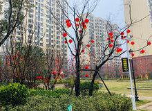 華西新城:實景現房這四個字值多少錢?我來告訴你!