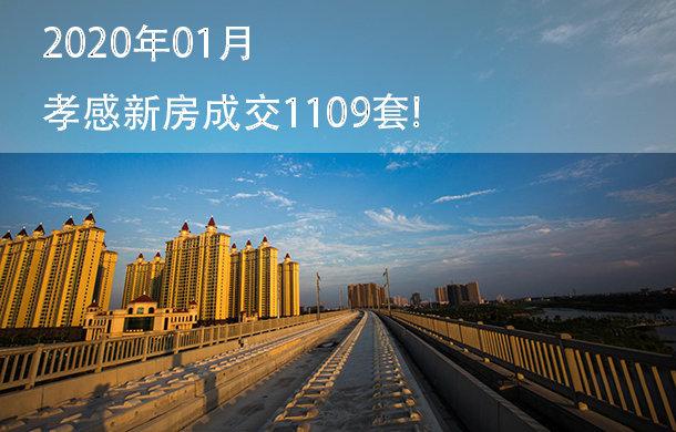 2020年01月孝感新房成交1109套