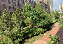 新城一号新街 花园洋房 有实力全款的主子来  楼层好户型好