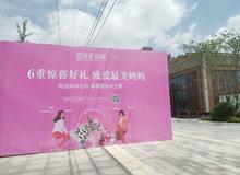 感恩母親 情暖五月 | 錦華首府母親節活動圓滿結束